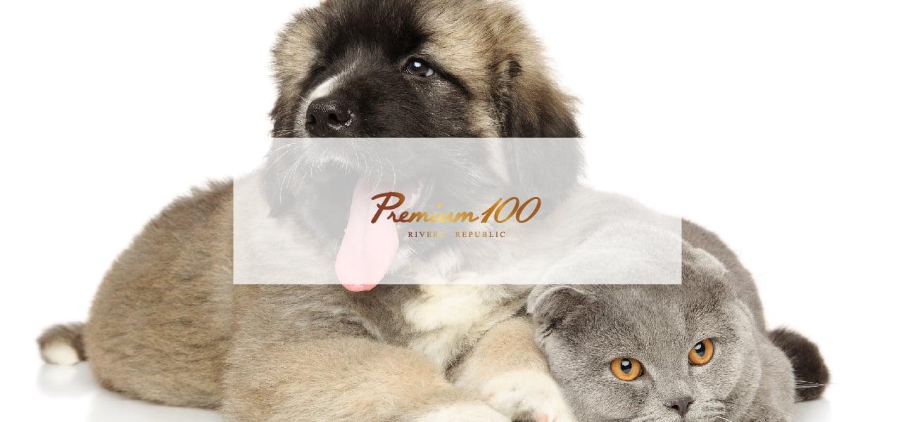Premium100