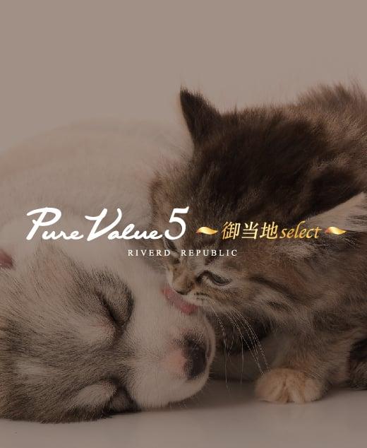 PureValue5御当地select