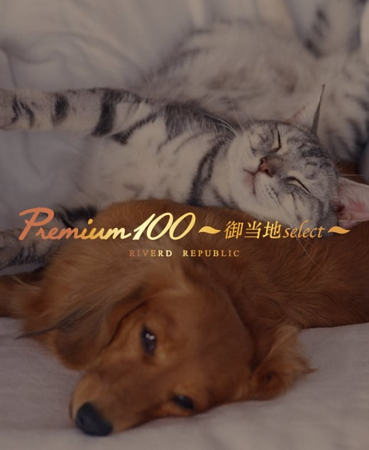 Premium100御当地select